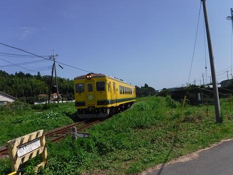 DSCF2735.JPG